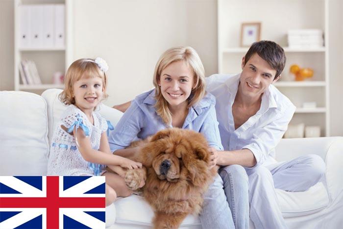 英国探亲签证